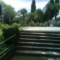 парк санатория, Санаторное