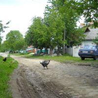 ул. Первомайская, Бар