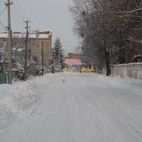 Выезд с ул. Туника на Пролетарскую, Бар