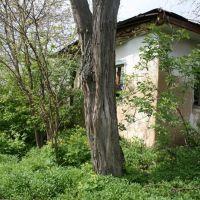 Kirova 1, Бершадь