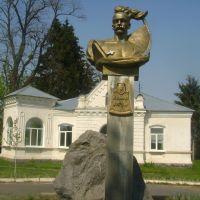 """Пам""""ятник Данилу Нечаю, Брацлав"""