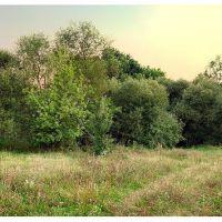 Vicinities of Bratslav. Vinnytsia Oblast. Ukraine. / Брацлав., Брацлав