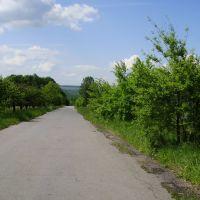 Дорога на Немерчі, Вендичаны