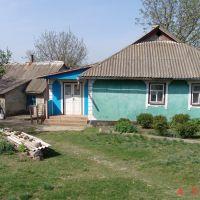 Подлесное Могилев-Подольский район, Винницкая область, Вендичаны