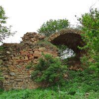 Озаринці - руїни замку,  Ozaryntsi - ruins of castle, Ozarzyńce - zamek, Вендичаны