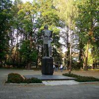Горький у парку Горького, Винница