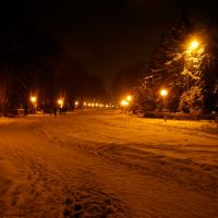 Парк імені Горького, Винница