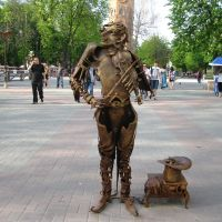 Вінниця - скрипаль, Винница