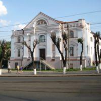 Вінниця - краєзнавчий музей, Винница