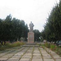 В. І. Ленін, Вороновица