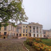 Вороновиця - палац Грохольського, Voronovytsya - palace, 1777, Вороновица
