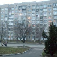 ~Девятка улица Карла Маркса~, Гайсин