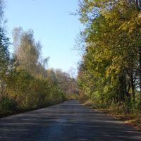 Дорога к селу Ворошиловка, Гнивань