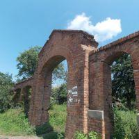 ~Ворота старого Польского кладбища~, Дашев
