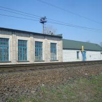 Станция Жмеринка. Локомотивное депо, Жмеринка