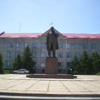 Ленін і міськрада, Калиновка