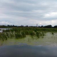 Озеро перед початком р.Жердь (район старої водокачки), Калиновка