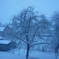 Синій ранок, Калиновка