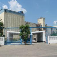 Іліватор - Granary, Крыжополь