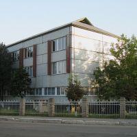 ►Ліцей, Крыжополь