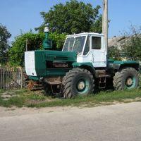 ►Вечный трактор, Крыжополь