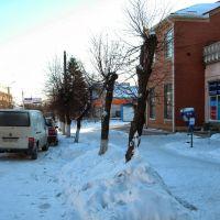 Возле Короны Зимой 2014, Липовец