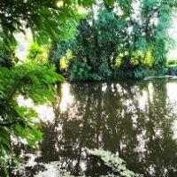 Панорама у реки с узенькой дорожки, Липовец
