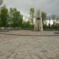 Загиблим воїнам 1941-45, Литин