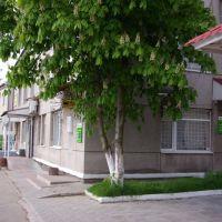 Приватбанк, 1-ша школа, Литин