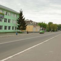 Центральна вулиця, Литин