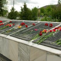 Памятник загиблим воїнам, Литин