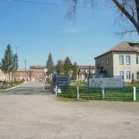 Районна лікарня, Литин