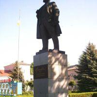 Центральная Улица. Памятник В.И. Ленину, Литин