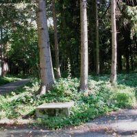 Nemiriv Park 24, Немиров