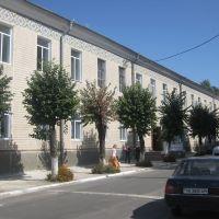 Гімназія, Немиров