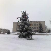 Ялинка 2010, Оратов