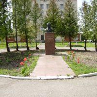 Памятник ім.Пирогова, Оратов