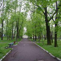Парк, Погребище
