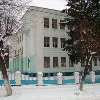 Школа №2,ул.Кирова., Тульчин