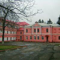 Школа - интернат(бывш. женское епархиальное  училище), Тульчин