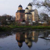 Троїцька церква у Берестечку, Берестечко