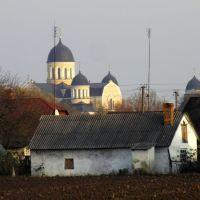 Вид на Троїцьку церкву у Берестечку, Берестечко