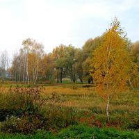 Парк Словянский-пойма реки Луга., Владимир-Волынский