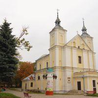 Костел Иоакима и Анны 1775г.Г Владимир-Волынский., Владимир-Волынский