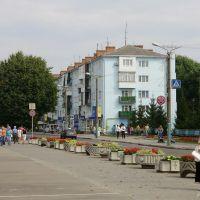 Володимир 24.08.2010, Владимир-Волынский