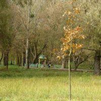 Володимир. Словянський парк. джерело 10.2010, Владимир-Волынский