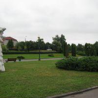 У парку, Владимир-Волынский