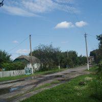 Bandgi street, Голобы