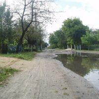 Bandgi str., Голобы