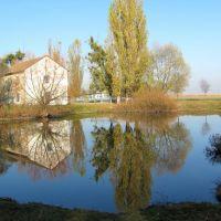 Озеро,оно омывало дворцовый комплекс с северной стороны,при строительстве трассы Луцк-Ковель, часть озера и парка было уничтожено., Голобы